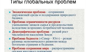 Россия и глобальные проблемы современного мира