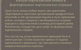 Развитие партизанской войны