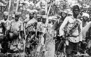 Сражения первой мировой в азии и африке