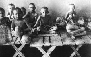 Голод на украине