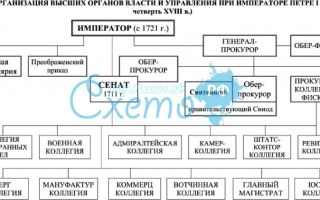 Высшие органы власти и управления в первой четверти 18 в.