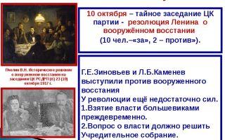 Переворот большевиков или революция, за и против