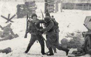 Борьба немцев против немцев