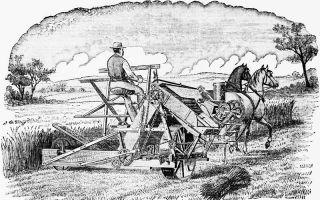 Сельскохозяйственное развитие в конце xix века