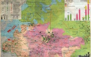 Экономическое развитие национальных районов российской империи