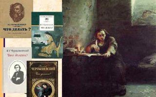 Роман чернышевского — что делать?